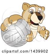 Lion Cub School Mascot Character Grabbing A Volleyball