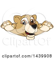 Poster, Art Print Of Lion Cub School Mascot Character Leaping
