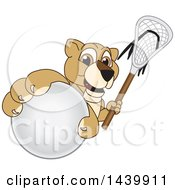 Lion Cub School Mascot Character Grabbing A Lacrosse Ball And Holding A Stick