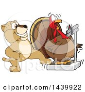 Lion Cub School Mascot Character Stepping On A Scale While A Turkey Is Weighing Himself