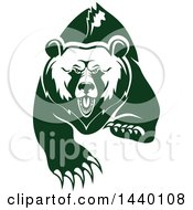 White And Green Running Angry Grizzly Bear