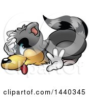 Clipart Of A Cartoon Raccoon Cowering Royalty Free Vector Illustration by dero