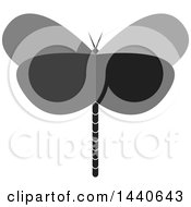 Grayscale Dragonfly