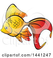 Clipart Of A Fancy Goldfish Royalty Free Vector Illustration