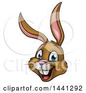 Cartoon Happy Brown Easter Bunny Rabbit Face