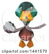 3d Mallard Drake Duck On A White Background
