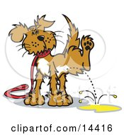 Dog On A Leash Lifting His Leg To Pee Clipart Illustration