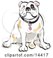Bulldog Sitting Clipart Illustration