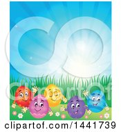 Group Of Happy Easter Eggs In Grass Against Sunshine