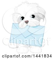 Clipart Of A Cute White Shih Tzu Dog Carrying A Blue Envelope In Its Mouth Royalty Free Vector Illustration