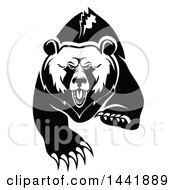 Clipart Of A Black And White Running Angry Grizzly Bear Royalty Free Vector Illustration by Vector Tradition SM