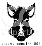 Clipart Of A Black And White Razorback Boar Head Royalty Free Vector Illustration