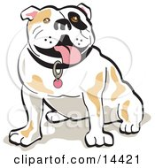 Sitting Bulldog Hanging His Tongue Out Clipart Illustration