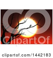 Clipart Of A Silhouetted Bare Tree With Birds Against A Sunset Royalty Free Illustration