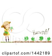 Clipart Of A Caucasian Girl Harvesting Her Carrot Garden Royalty Free Vector Illustration