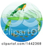 Clipart Of A Life Cycle Of A Frog With Eggs Tadpoles And A Leaping Adult Royalty Free Vector Illustration