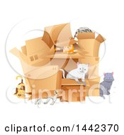 Group Of Cats Playing In Boxes