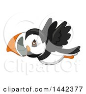 Clipart Of A Cute Flying Puffin Bird Royalty Free Vector Illustration