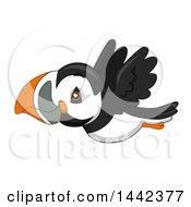 Cute Flying Puffin Bird