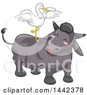 Crane Balancing On The Back Of A Carabao Water Buffalo