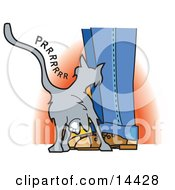Cute Gray Cat Purring And Rubbing On A Persons Legs Clipart Illustration