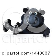 3d Black Bull Character Working Out With A Dumbbell On A White Background
