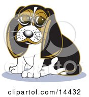 Cute Beagle Dog With Puppy Eyes Clipart Illustration