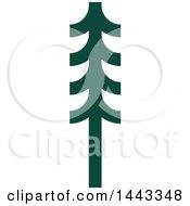 Green Evergreen Fir Tree