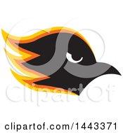 Yellow Orange Black And White Profiled Hawk Mascot Head
