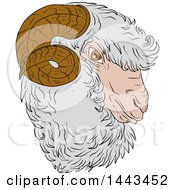 Clipart Of A Sketched Drawing Styled Merino Ram Sheep Head Royalty Free Vector Illustration by patrimonio