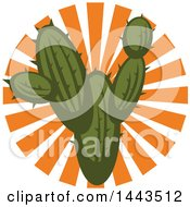 Clipart Of A Mexican Cactus And Sun Rays Design Royalty Free Vector Illustration by Vector Tradition SM