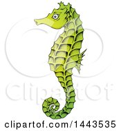 Gradient Green Sea Horse