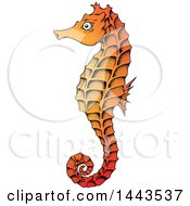 Clipart Of A Gradient Orange Sea Horse Royalty Free Vector Illustration