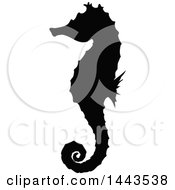 Black Silhouetted Sea Horse