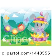 Gray Easter Bunny Rabbit In A Cracked Decorated Egg Shell In A Spring Landscape