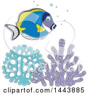 Clipart Of A Cartoon Pretty Powder Blue Tang Fish Over Corals Royalty Free Vector Illustration by Alex Bannykh