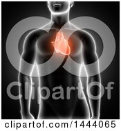 Clipart Of A 3d Xray Man With Highlighted Red Heart On Black Royalty Free Illustration