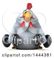 Clipart Of A 3d Chubby White Chicken Working Out With Dumbbells On A White Background Royalty Free Illustration