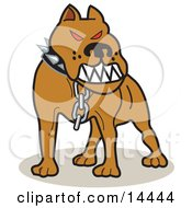Mean Pitbull With Red Eyes In The Red Zone Growling Clipart Illustration