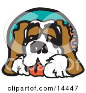 Cute St Bernard Dog Clipart Illustration by Andy Nortnik