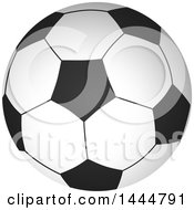 Grayscale Soccer Ball