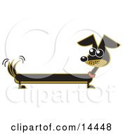 Long Brown And Black Wiener Dog Wagging His Tail Clipart Illustration