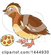 Clipart Of A Cartoon Bird And Egg Royalty Free Vector Illustration