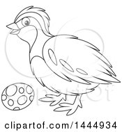 Clipart Of A Cartoon Black And White Lineart Bird And Egg Royalty Free Vector Illustration