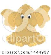Poster, Art Print Of Cute Baby Elephant Sitting
