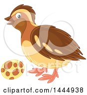 Clipart Of A Bird And Egg Royalty Free Vector Illustration