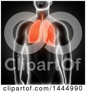 Clipart Of A 3d Xray Man With Highlighted Red Lungs On Black Royalty Free Illustration