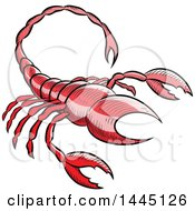 Clipart Of A Sketched Red Astrology Zodiac Scorpio Scorpion Royalty Free Vector Illustration by cidepix