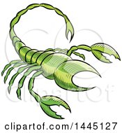Clipart Of A Sketched Green Astrology Zodiac Scorpio Scorpion Royalty Free Vector Illustration