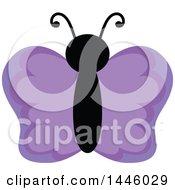 Poster, Art Print Of Purple Butterfly